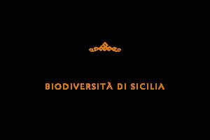 Cortese_Logo